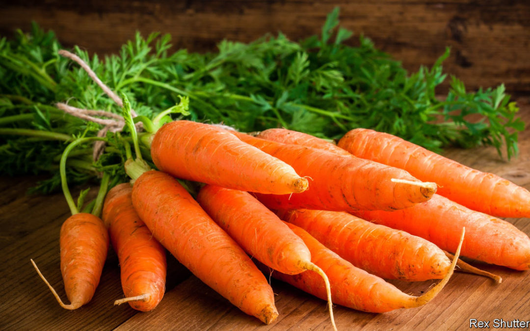 Customer Stories – Carrots, Karat and Carat